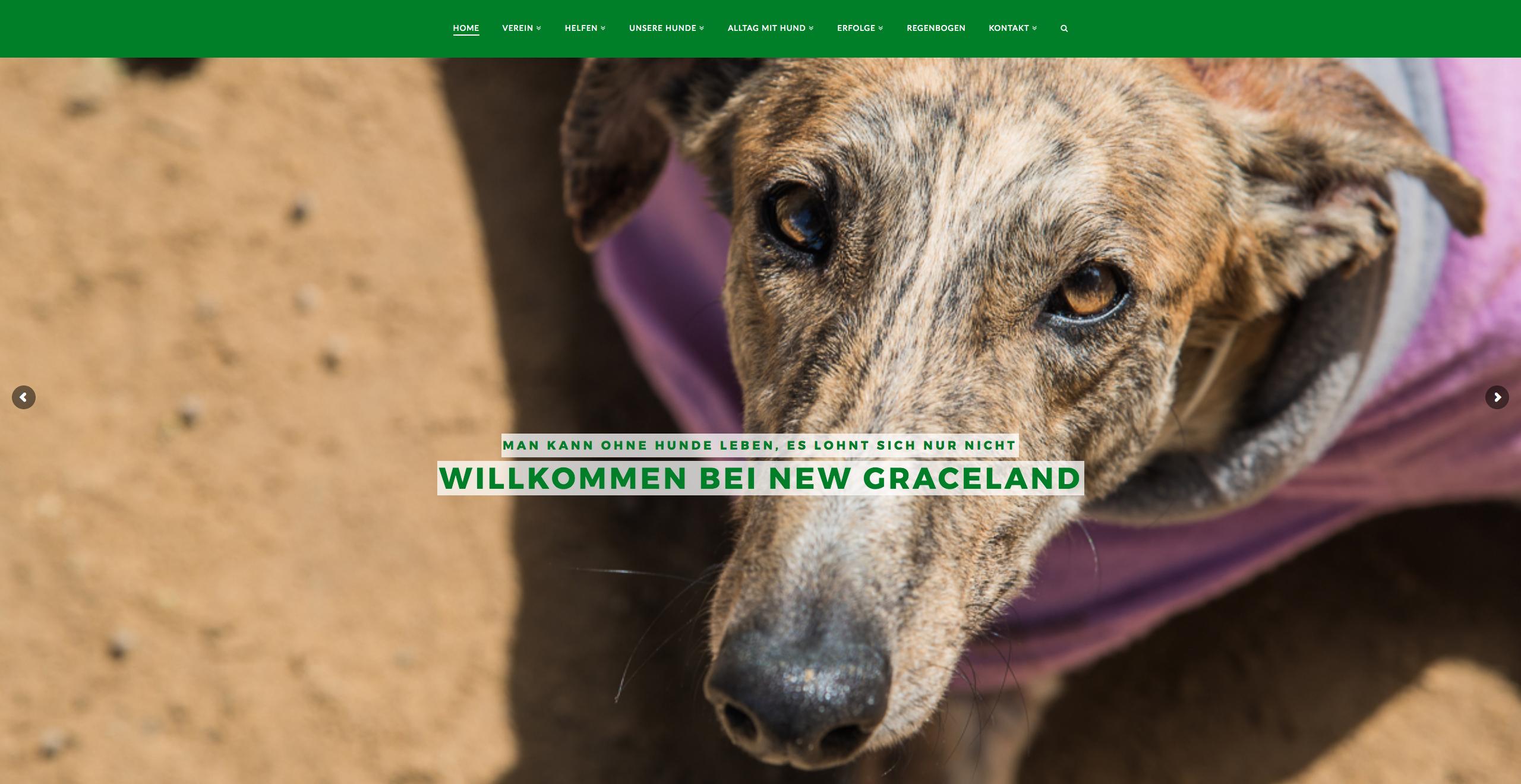 Tierschutzprojekt